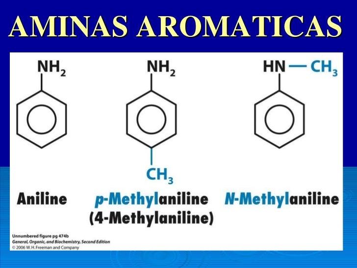adrenalina es una hormona esteroidea