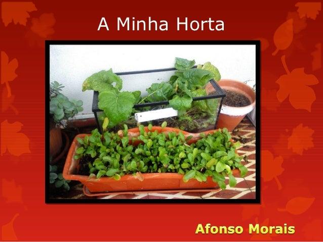 A Minha Horta