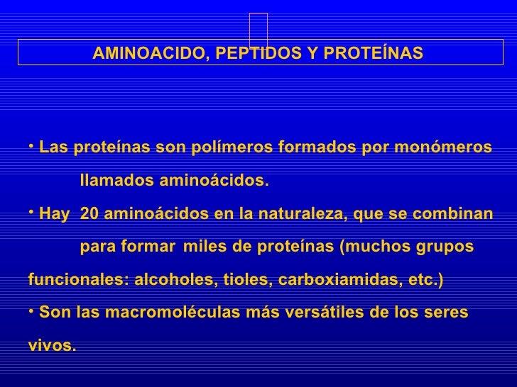 AMINOACIDO, PEPTIDOS Y PROTEÍNAS  <ul><li>Las proteínas son polímeros formados por monómeros  llamados aminoácidos. </li><...