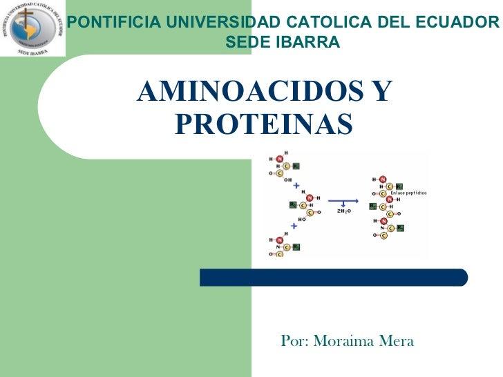 AMINOACIDOS Y PROTEINAS Por: Moraima Mera PONTIFICIA UNIVERSIDAD CATOLICA DEL ECUADOR SEDE IBARRA