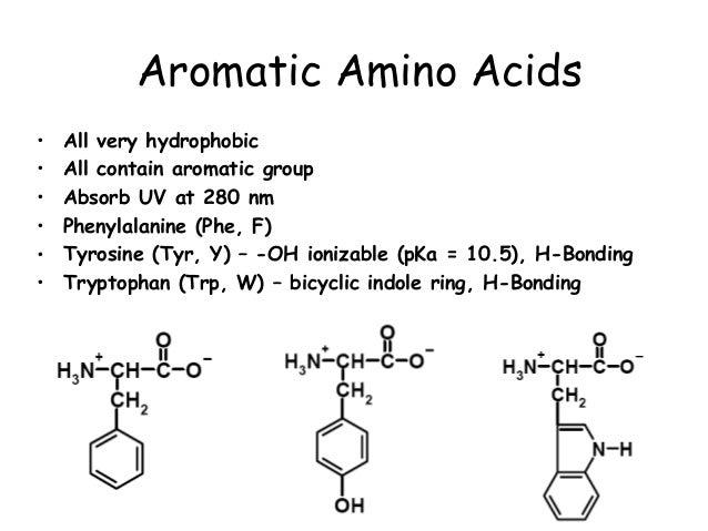 Aromatic Amino Acids  SpringerLink