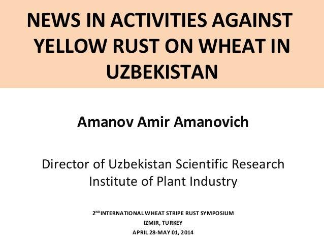 NEWS IN ACTIVITIES AGAINST YELLOW RUST ON WHEAT IN UZBEKISTAN Amanov Amir Amanovich Director of Uzbekistan Scientific Rese...