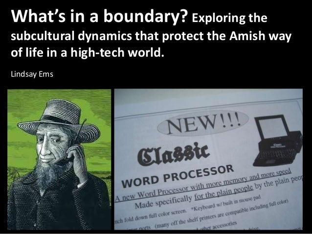 What's in a boundary? Exploring the subcultural dynamics that protect the Amish way of life in a high-tech world