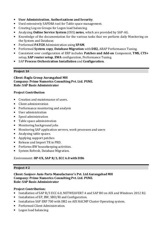 sap security resume
