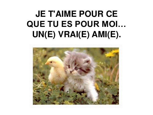 Amitie franche