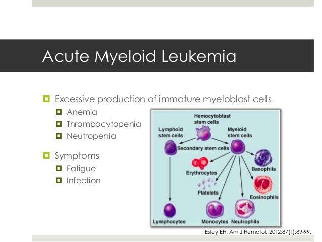 Aml leukemia prognosis in adults