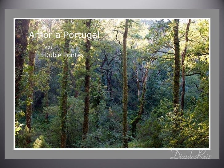 Amor a Portugal  Voz Dulce Pontes