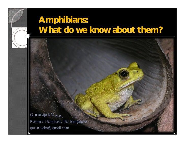 Amphibians:      What do we know about them?     Gururaja KV, Ph.D., Research Scientist, IISc, Bangalore gururajakv@gmail....