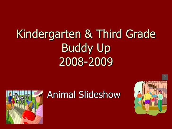 Kindergarten & Third Grade Buddy Up 2008-2009 Animal Slideshow