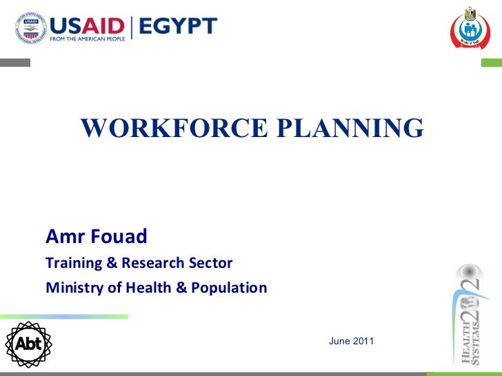 Development and Application of a Workforce Planning Model in Egypt