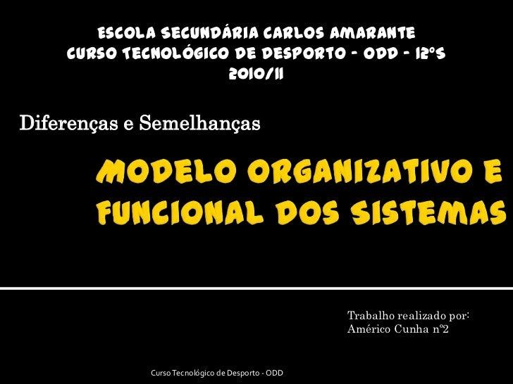 Escola Secundária Carlos Amarante<br />Curso Tecnológico de Desporto – ODD - 12ºS<br />2010/11<br />Diferenças e Semelhanç...