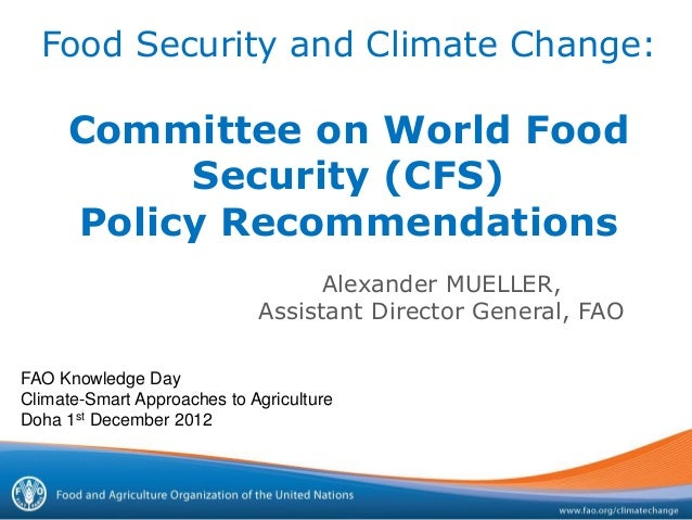 Committee on World Food Security (CFS) Policy Recommendations