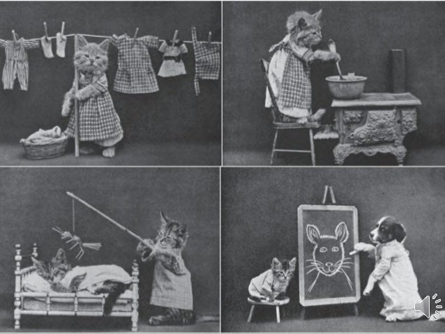 Amusing Vintage Cats (dedicated to Mireille) Photographer Harry Whittier