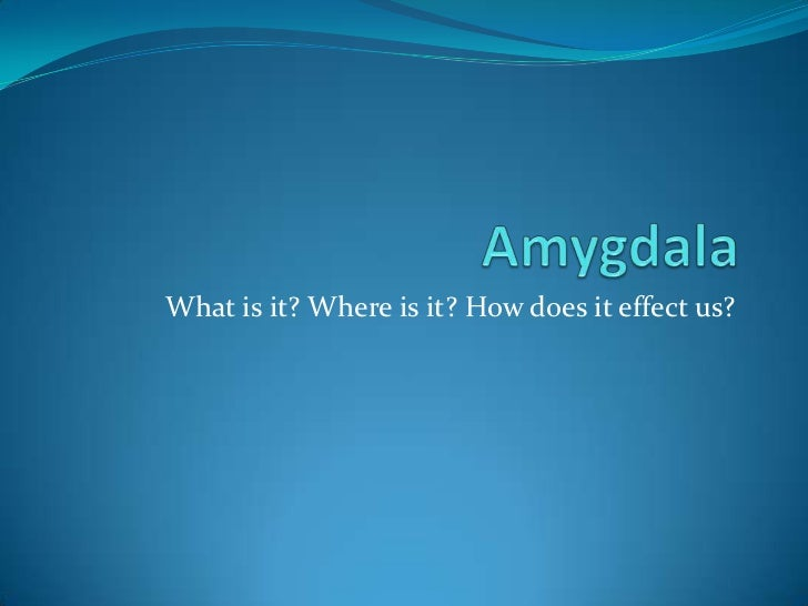 Amygdala<br />What is it? Where is it? How does it effect us?<br />