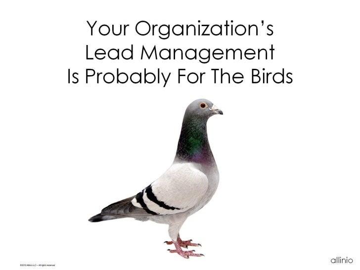 Your Organization's                                              Lead Management                                          ...