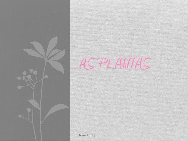 AS PLANTASFevereiro 2013