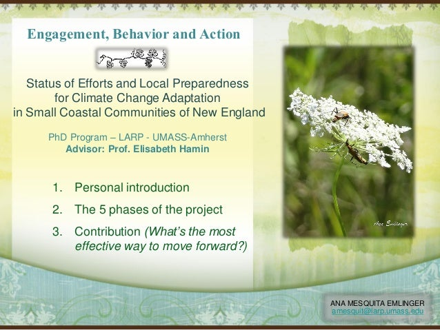 Engagement, Behavior and Action Status of Efforts and Local Preparedness for Climate Change Adaptation in Small Coastal Co...