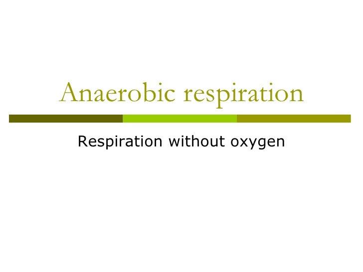 Anaerobic respiration 2