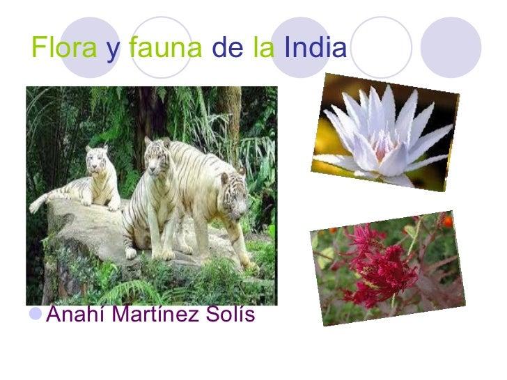 Flora   y   fauna   de   la   India <ul><li>Anahí Martínez Solís </li></ul>