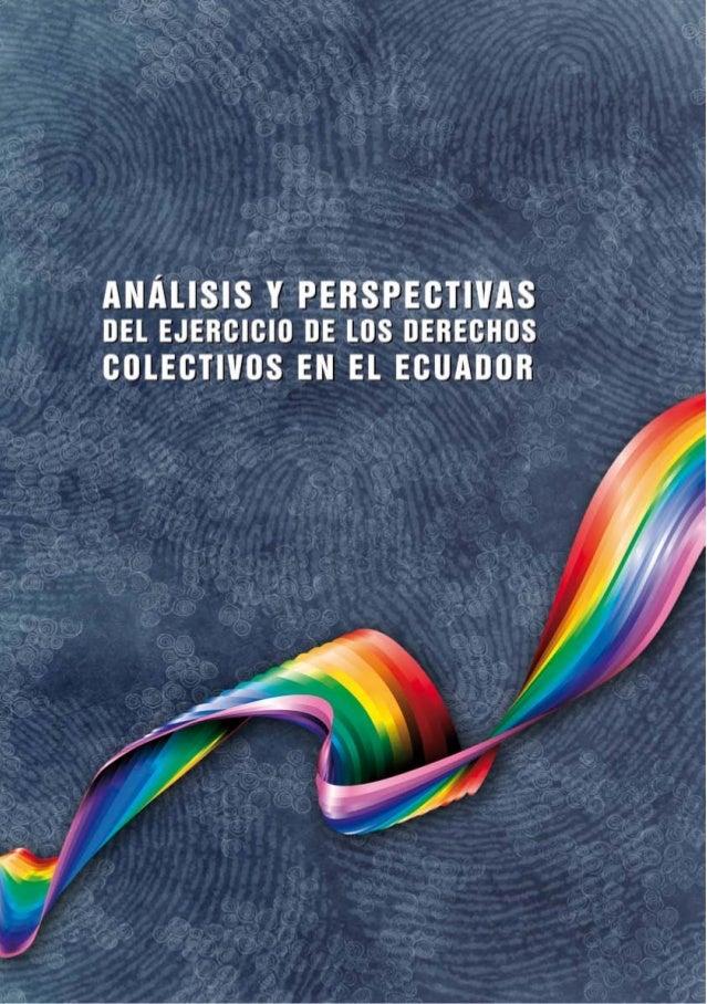 Analisis y perspectivas el ejercicio de los derechos