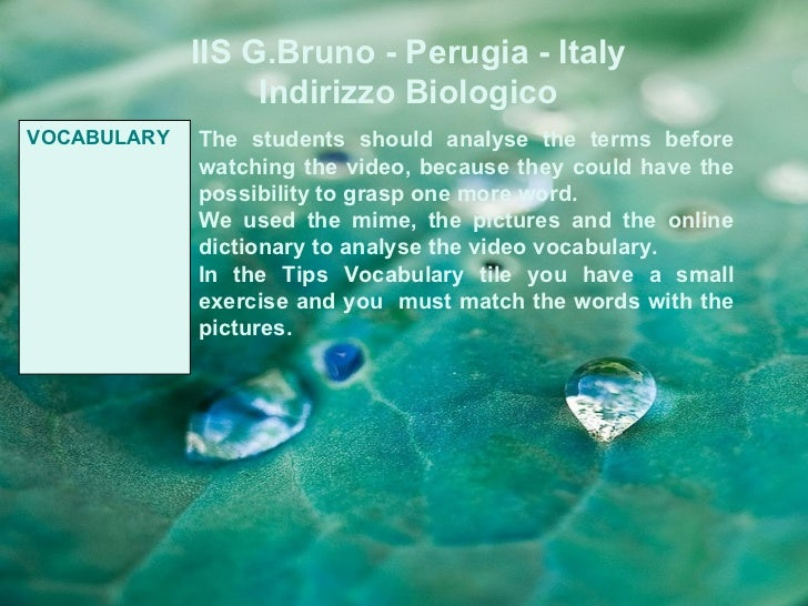 IIS G.Bruno - Perugia - Italy                  Indirizzo BiologicoVOCABULARY   The students should analyse the terms befor...