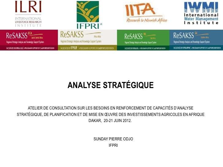 ANALYSE STRATÉGIQUE     ATELIER DE CONSULTATION SUR LES BESOINS EN RENFORCEMENT DE CAPACITÉS D'ANALYSESTRATÉGIQUE, DE PLAN...