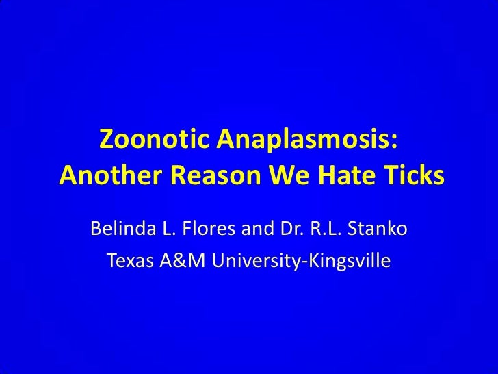 Zoonotic Anaplasmosis:   Another Reason We Hate Ticks<br />Belinda L. Flores and Dr. R.L. Stanko<br />Texas A&M University...