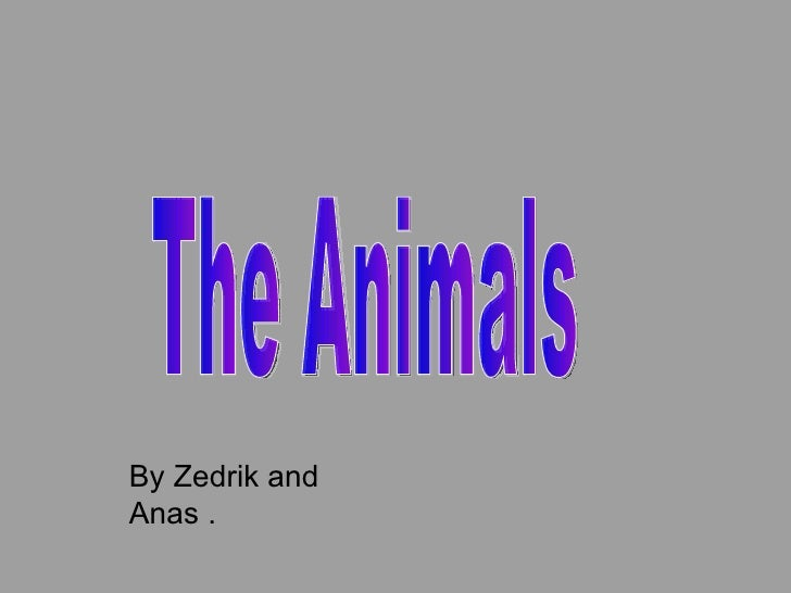 By Zedrik and Anas . The Animals