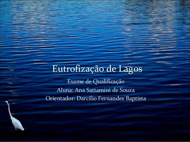 Eutrofização de Lagos Exame de Qualificação Aluna: Ana Sattamini de Souza Orientador: Darcilio Fernandes Baptista