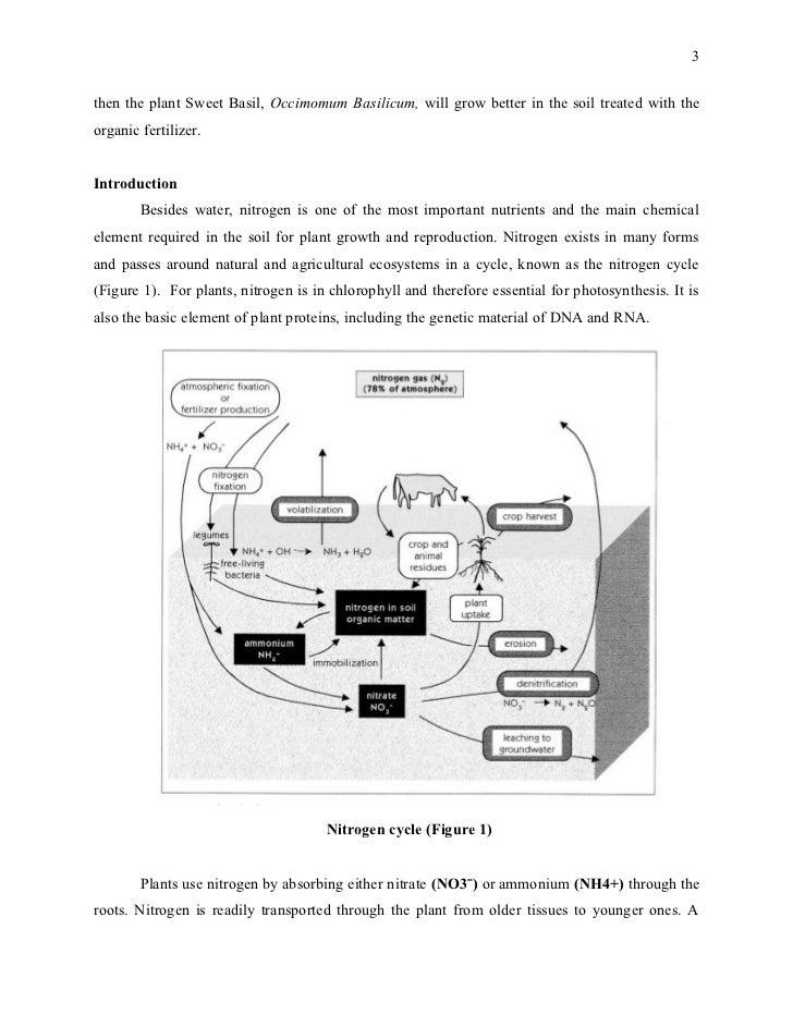 Research proposal doc