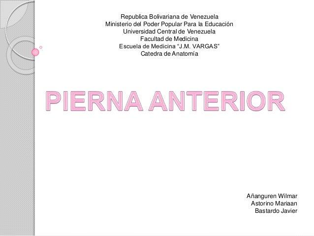Republica Bolivariana de Venezuela Ministerio del Poder Popular Para la Educación Universidad Central de Venezuela Faculta...