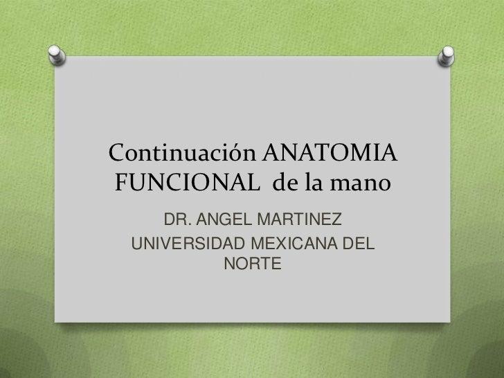 Continuación ANATOMIAFUNCIONAL de la mano    DR. ANGEL MARTINEZ UNIVERSIDAD MEXICANA DEL          NORTE