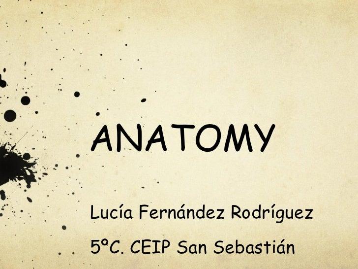 ANATOMY Lucía Fernández Rodríguez 5ºC. CEIP San Sebastián