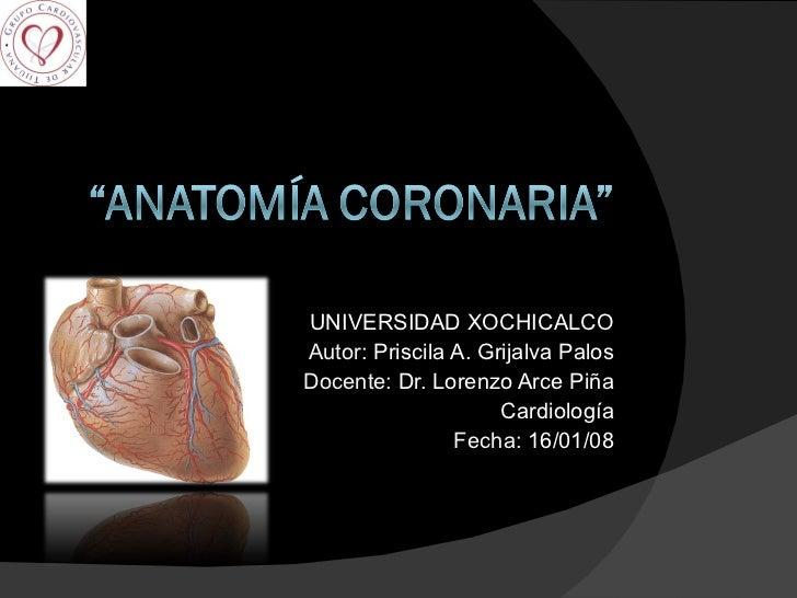 UNIVERSIDAD XOCHICALCO Autor:  Priscila A. Grijalva Palos Docente:   Dr. Lorenzo Arce Piña Cardiología Fecha:  16/01/08