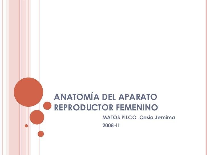 ANATOMÍA DEL APARATO REPRODUCTOR FEMENINO MATOS PILCO, Cesia Jemima 2008-II