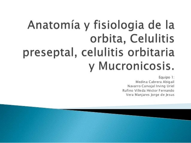 Anatomía de la orbita, celulitis preseptal, celulitis orbitaria y mucronicosis.