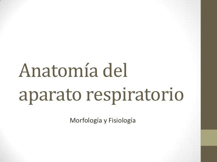 Anatomía delaparato respiratorio      Morfología y Fisiología