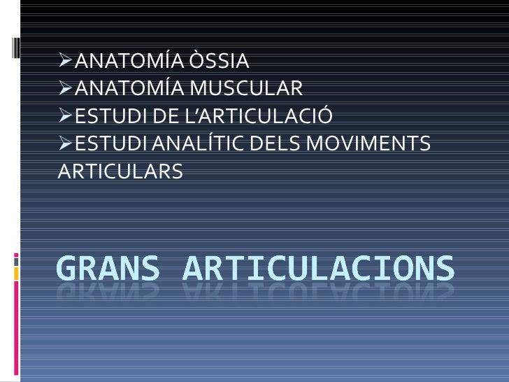 <ul><li>ANATOMÍA ÒSSIA </li></ul><ul><li>ANATOMÍA MUSCULAR </li></ul><ul><li>ESTUDI DE L'ARTICULACIÓ </li></ul><ul><li>EST...