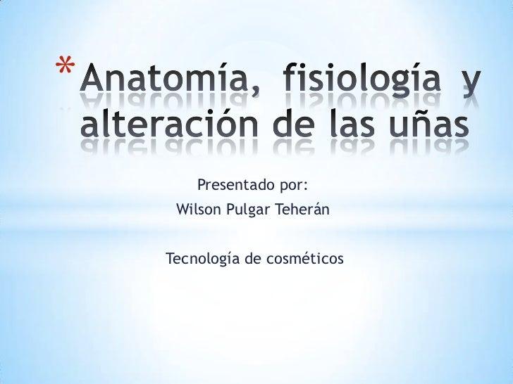 Anatomía, fisiología y alteración de las uñas<br />Presentado por:<br />Wilson Pulgar Teherán<br />              Tecnologí...