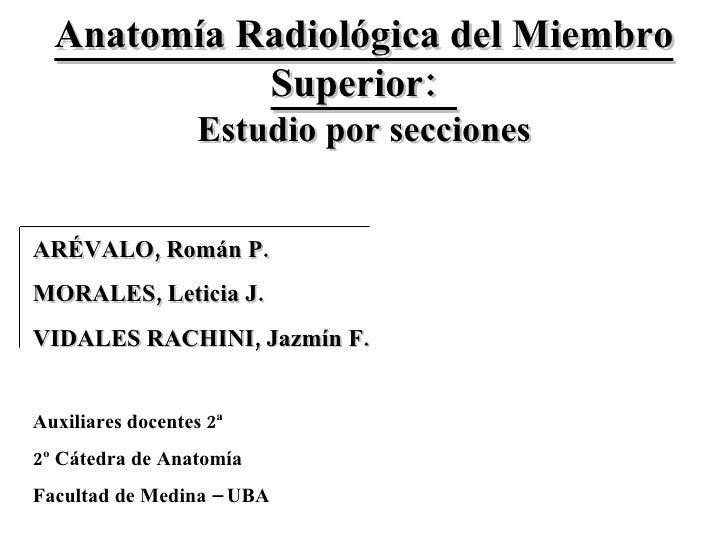 Anatomía Radiológica del Miembro Superior:  ARÉVALO, Román P. MORALES, Leticia J. VIDALES RACHINI, Jazmín F. Estudio por s...