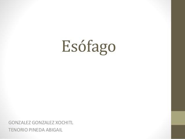 Esófago GONZALEZ GONZALEZ XOCHITL TENORIO PINEDA ABIGAIL
