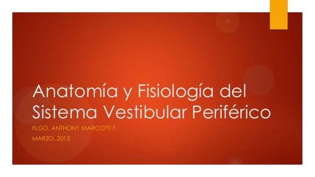Anatomía y Fisiología del Sistema Vestibular Periférico