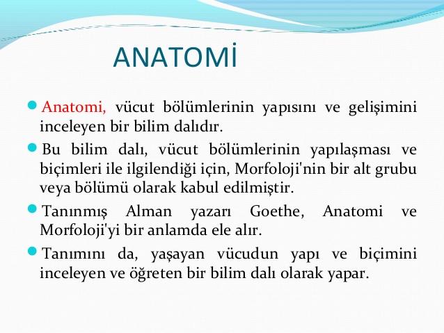 anatomi-ders-notlar-2-638.jpg? ...