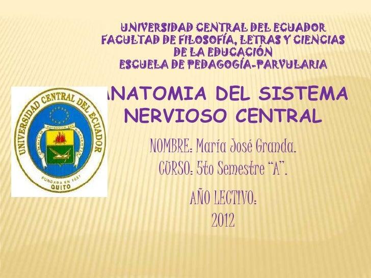 UNIVERSIDAD CENTRAL DEL ECUADORFACULTAD DE FILOSOFÍA, LETRAS Y CIENCIAS           DE LA EDUCACIÓN   ESCUELA DE PEDAGOGÍA-P...