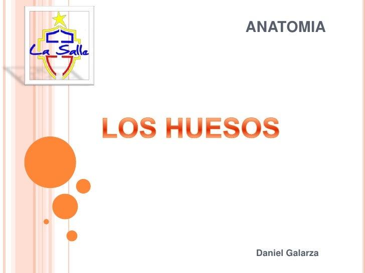 ANATOMIA Daniel Galarza