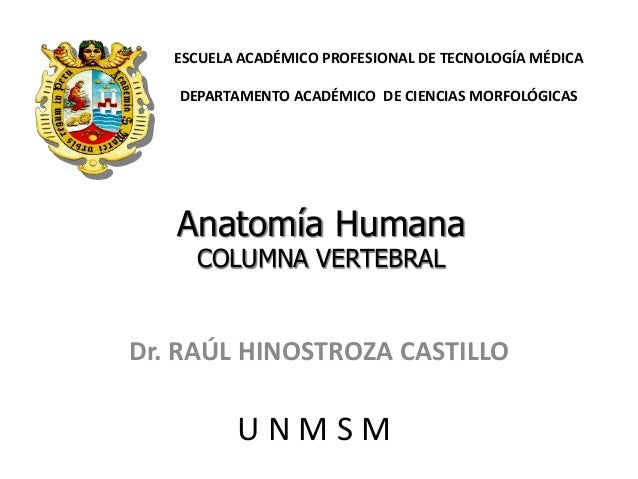 Dr. RAÚL HINOSTROZA CASTILLO Anatomía Humana COLUMNA VERTEBRAL ESCUELA ACADÉMICO PROFESIONAL DE TECNOLOGÍA MÉDICA DEPARTAM...