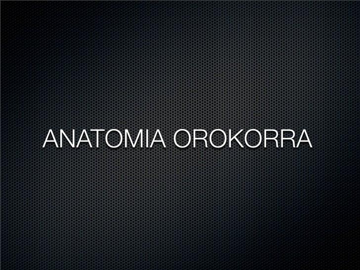 ANATOMIA OROKORRA