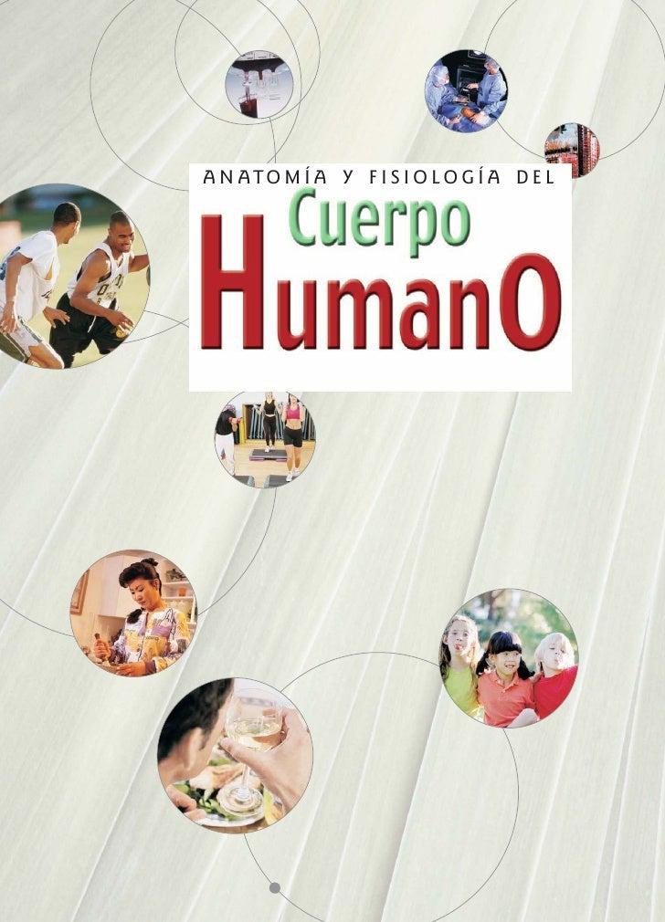 fisiologia cuerpo humano: