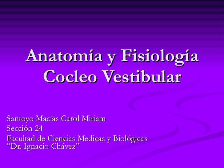 """Anatomía y Fisiología Cocleo Vestibular Santoyo Macías Carol Miriam Sección 24 Facultad de Ciencias Medicas y Biológicas """"..."""