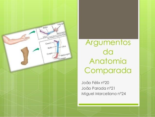 Argumentos da Anatomia Comparada João Félix nº20 João Parada nº21 Miguel Marceliano nº24